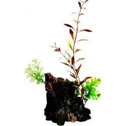 Ornamento Deco Wood  con Plantas MARINA - Mediano