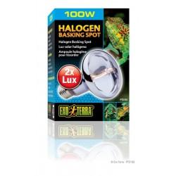 Bombilla Halógeno Spot EXO TERRA - 100 W