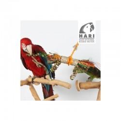 Juguetes Naturales para Pájaros Tesoros Rústicos HARI - Hojas Buri S