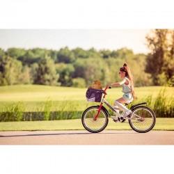 Pawise Cesta para bicicleta