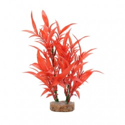 Fluval Aqualife Plant Variadas 20cm - Hygrophila Roja