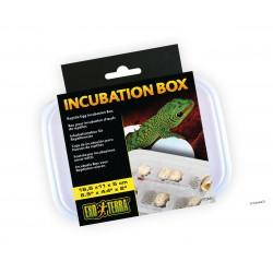 Caja Incubadora de huevos Exoterra