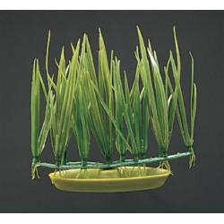 Plantas Plasticas Foreground 5cm  MARINA - Micro Sagittaria