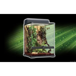Kit Terrario Tropical EXO TERRA - Med.45x45x60 cm