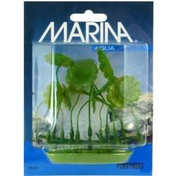 Plantas Plasticas Foreground 5cm  MARINA - Pennywort