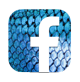 Facebook Fluval España