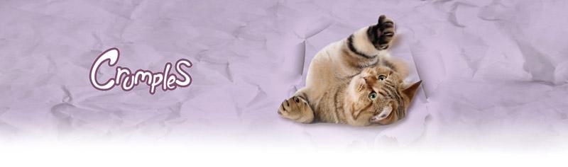Juguetes para gatos de Paper Fabric