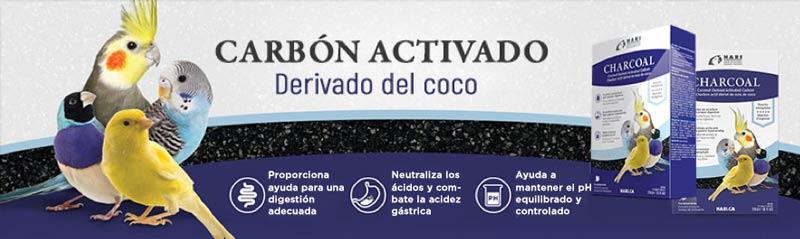 Carbón activado derivado del coco para aves de todo tipo