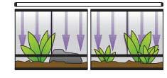 Puedes colocar un fluorescente largo para varios terrarios