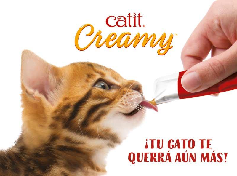 Snacks liquido para gatos