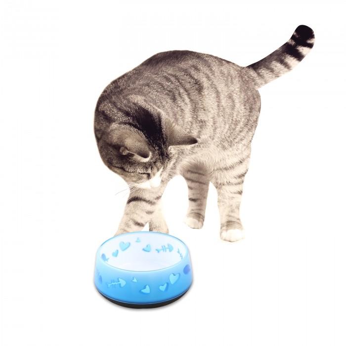300 Ml Color Azul All For Paws Comederos Para Gatos
