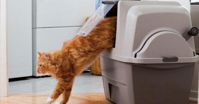 Arenero gatera autolimpiable Catit SmartSift para gatos