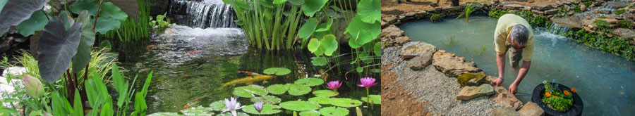 Laguna, fabricantes de estanques y accesorios para el mantenimiento de estanques.