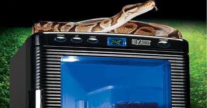 Nueva incubadora Exo Terra para reptiles