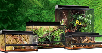 Terrarios Exo Terra para reptiles
