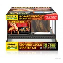 Kit de Incio Terrario EXO TERRA - Gecko Leopardo