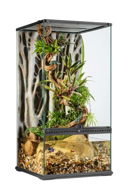Exo Terra Paludarium Peq. X-tall 45x45x90 cms