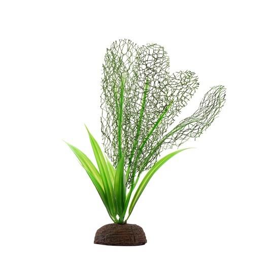Fluval Plant Madagascar 12,5cm