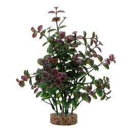 Fluval Aqualife Plant Variadas 20cm - Bacopa Roja