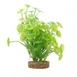 Fluval Aqualife Plant Variadas 20cm - Lysimachia