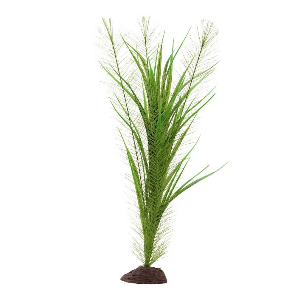Fluval Plant Valisneria 40cm