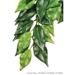 Plantas Colgantes de seda Exo Terra - Ficus Peq.