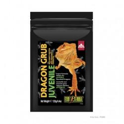 Dragon Grub Exo Terra Alimento de insectos - Juvenil 125g