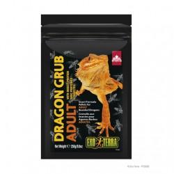 Dragon Grub Exo Terra Alimento de insectos - Adulto 250g