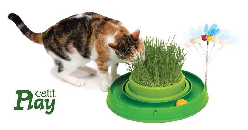 Circuito verde Catit Play con germinador con hierba gatera