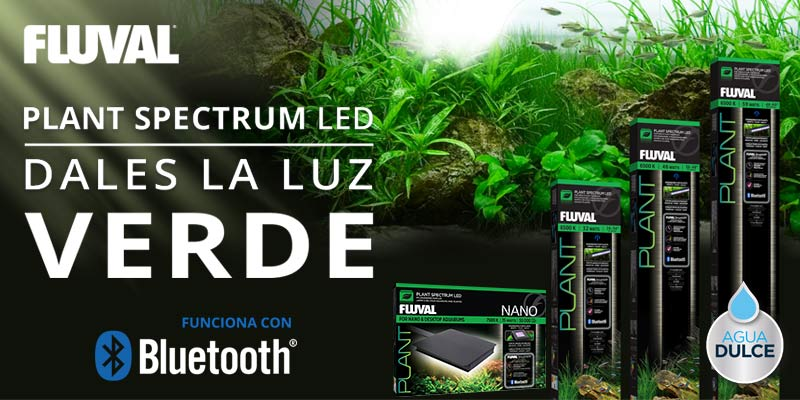 Banner de Plant Spectrum LED