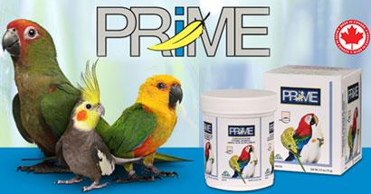 Prime, suplemento de vitaminas, minerales y aminoácidos para pájaros
