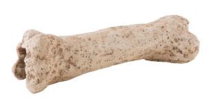 EXO TERRA Dino hueso nano refugio fósil