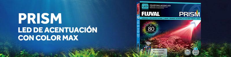 Nueva iluminación para acuarios Fluval Prism con 80 colores y efectos climáticos
