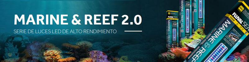 Nueva iluminación Fluval Marine & Reef para acuarios marinos
