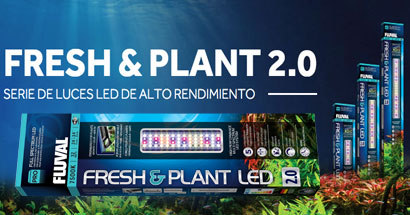 Iluminación Fluval Fresh & Plant para plantas