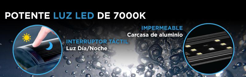 Acuario Spec con luz LED de 7000k