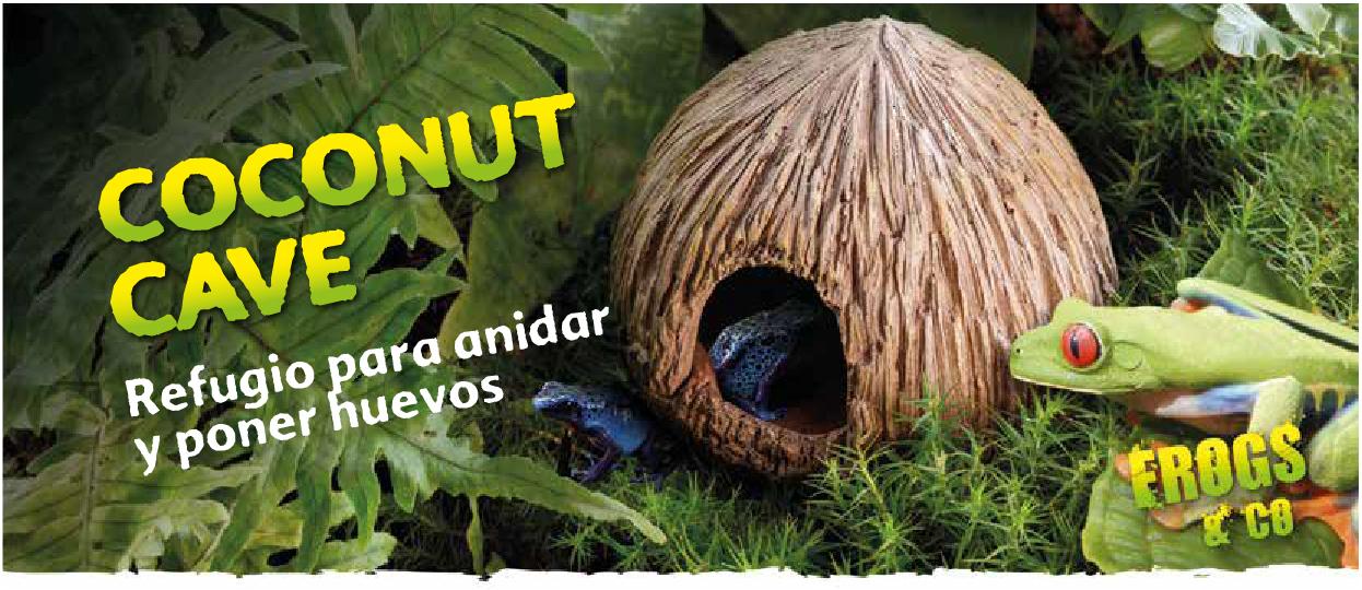 Coconut Cave Frog & Co Exo Terra
