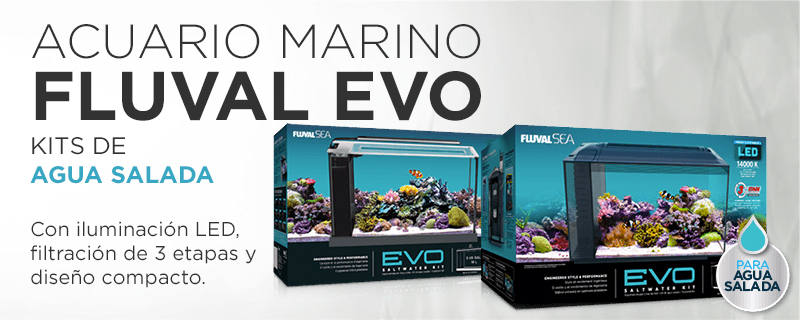 Fluval Evo Kits de acuarios para agua salada