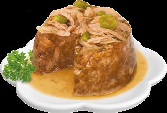 Plato Catit Dinner de pollo
