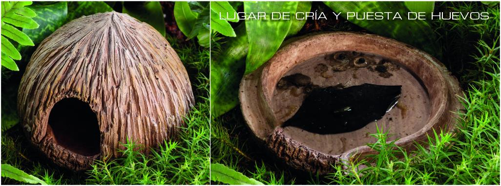 Coconut Cave Exo Terra para criar y anidar huevos