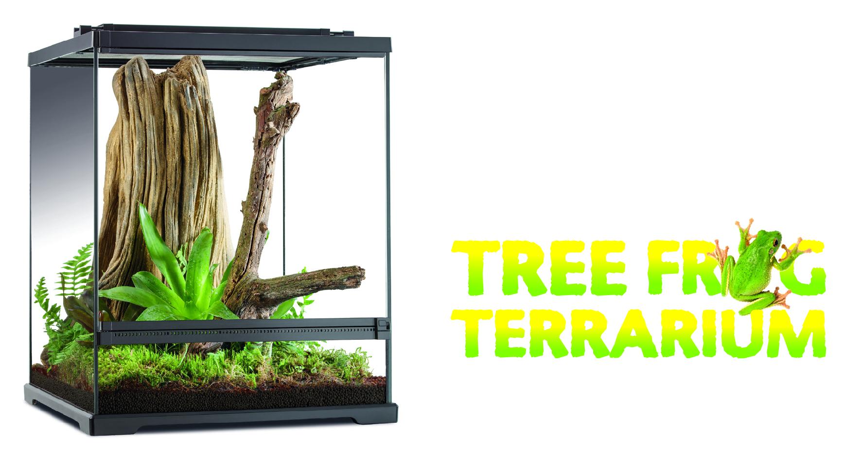 Tree Frog Terrario Exo Terra