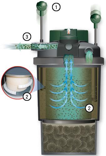 Filtros biologicos y mecanicos para estanques con lampara for Lampara uv estanque